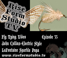 Fly Tying Video - John Collins Ties Gary Lafontaine's Emergent Sparkle Pupa Electric Style
